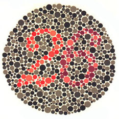 Ishihara's Tests For Colour Deficiency 38 Plates Edition 2015