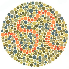 Ishihara S Test For Colour Deficiency 38 Plates Edition
