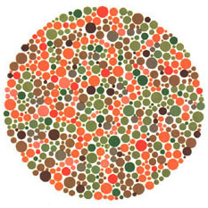 2 page essay on color blindness