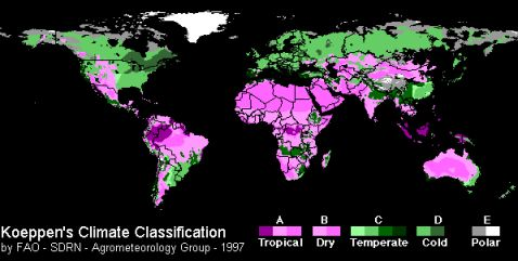 Climate Classification - Magenta Green