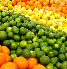 Colored Citrus Fruits
